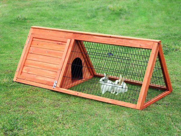 Best Rabbit Hutch Indoor and Outdoor Reviews