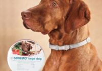 Seresto Collar For Dogs & Cats Reviews, Side effects